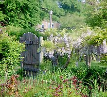 Garden Gate by peggyswfl