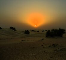 Alone in the Desert by Larry Lingard-Davis