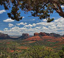 Sedona Red Rocks by Barbara Manis