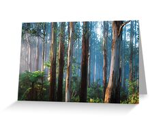 Sherbrooke Forest Greeting Card