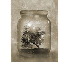 Saving Nature Photographic Print