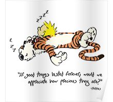 Calvin And Hobbes Nice Qoute  Poster