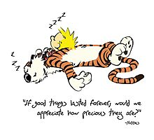 Calvin And Hobbes Nice Qoute  Photographic Print