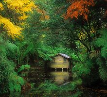 The Boatshed. by Ern Mainka