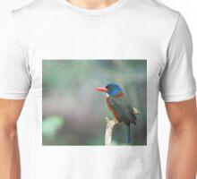 Green-Backed Kingfisher Unisex T-Shirt
