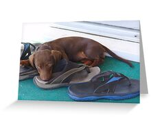 Protector of the shoes Greeting Card