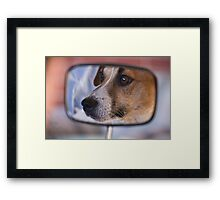 How much is that doggy in the Mirror Framed Print