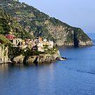 Manarola, Cinque Terre by Harry Oldmeadow