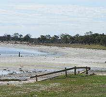 Lake Bonny at Barmera South Australia by HeatherBud