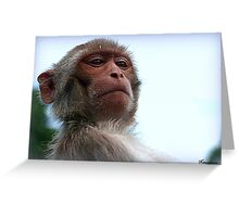 I Need To Take Look At Your Wipers! Greeting Card