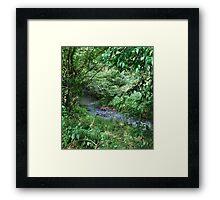 Little stream Framed Print
