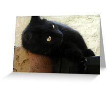 Mini Black Panther Greeting Card