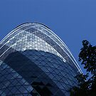 The Gherkin #2 by Charlotte Jarvis