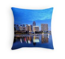 a view from the Merlion park Throw Pillow