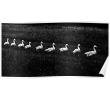 Marching Geese Poster