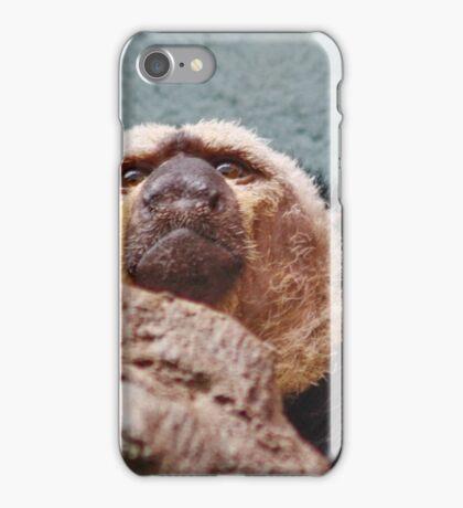 White Faced SAKI Monkey iPhone Case/Skin
