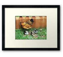Farm talk - Mommy Bobby and her clutch of 10 - Maree Framed Print