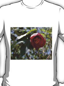 drol kar garden at paraparap T-Shirt