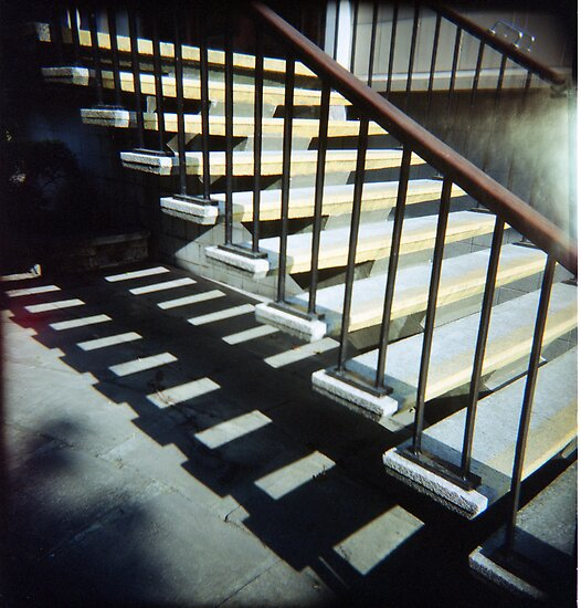 Got My Holga Back by rorycobbe