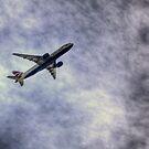 Boeing triple 7  by larry flewers