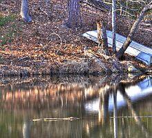 Lonely boat by Joel Aquino