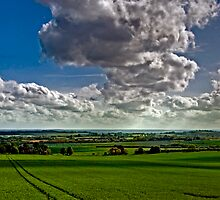 North Downs Way 37-19 by gollum1985
