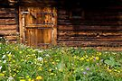 Spring Barn by Walter Quirtmair