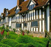 Mary Arden's Cottage by Nancy Barrett