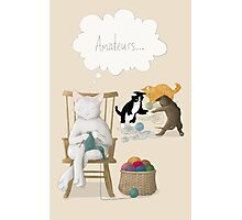 Of Cats and Yarn Photographic Print