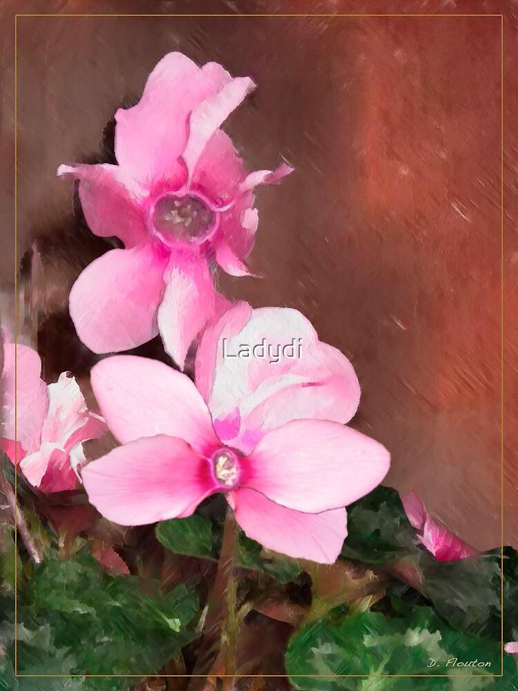 Pink Cyclamen by Ladydi