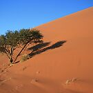 Dune 45, 5.00 AM Namibia by MacLeod