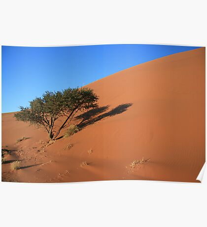 Dune 45, 5.00 AM Namibia Poster
