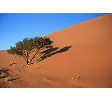 Dune 45, 5.00 AM Namibia Photographic Print