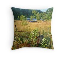 Abandoned.. Throw Pillow