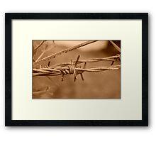 sepia wire Framed Print