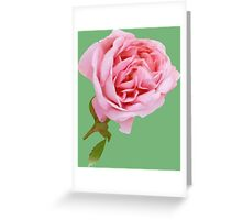 Cute pink rose Greeting Card