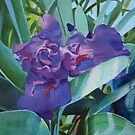 Purple Iris by Catherine Kuzma