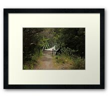 Walking Bridge on a Forest Path Framed Print