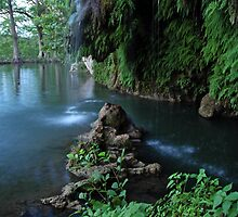 Krause Springs, TX by Kasey Lilly