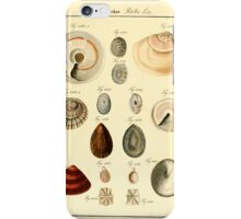Neues systematisches Conchylien-Cabinet - 129 - Patellae Lin iPhone Case/Skin