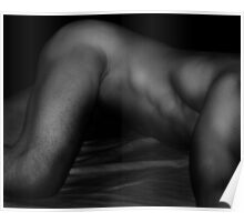 Bodyscape 7 Poster