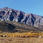 Long Valley, Mono County Parks by Ann Warrenton