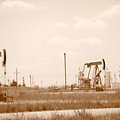 Where your oil comes from... by wahumom