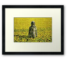Stranded in the sunflower field Framed Print