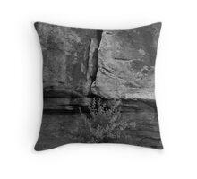 Rock and Sagebrush Throw Pillow