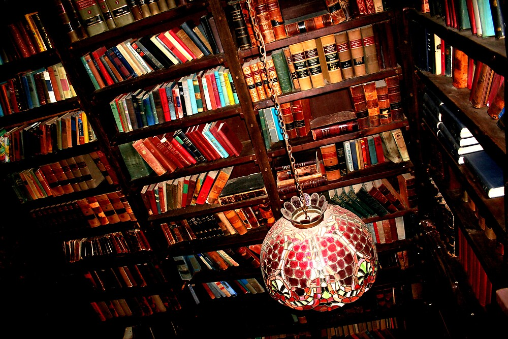 The Library by Emily Higginbotham