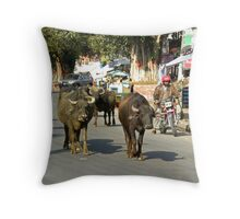 The Streets of Pokhara, Nepal Throw Pillow