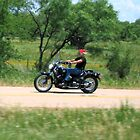 Live to Ride....Ride to Live.... by Sheila  Pasket