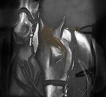 War Horses  by Al Bourassa