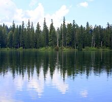 Reflections on Fish Lake #2 by aussiedi